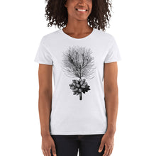 Load image into Gallery viewer, Himalayan Pine Women's Tee
