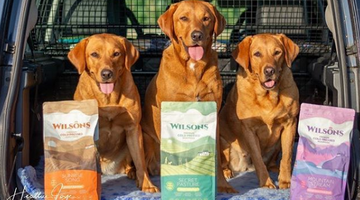 Breeding with Wilsons Pet Food