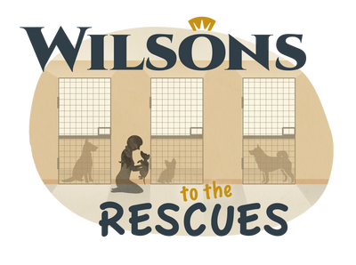 Introducing Wilsons to the Rescues