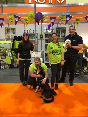 Birmingham Dogs Home at National Pet Show