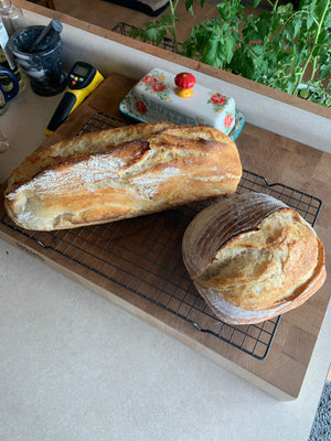 Sourdough Beginner Info