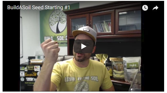 How To Start Cannabis Seeds For Your Grow