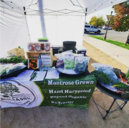 Local Produce in Montrose Colorado at the weekly farmer's market