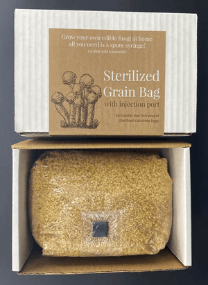 Growing Organic Sterilized Grain Bag W/ Injection Port (3LB)