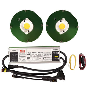 Timber LED Citizen (2) COB Kit - 100W