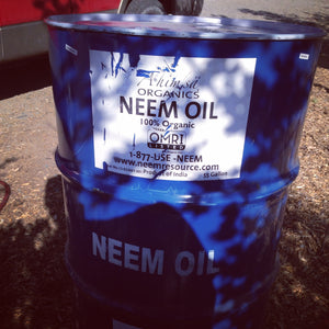 Neem Oil - Wild Harvest From India