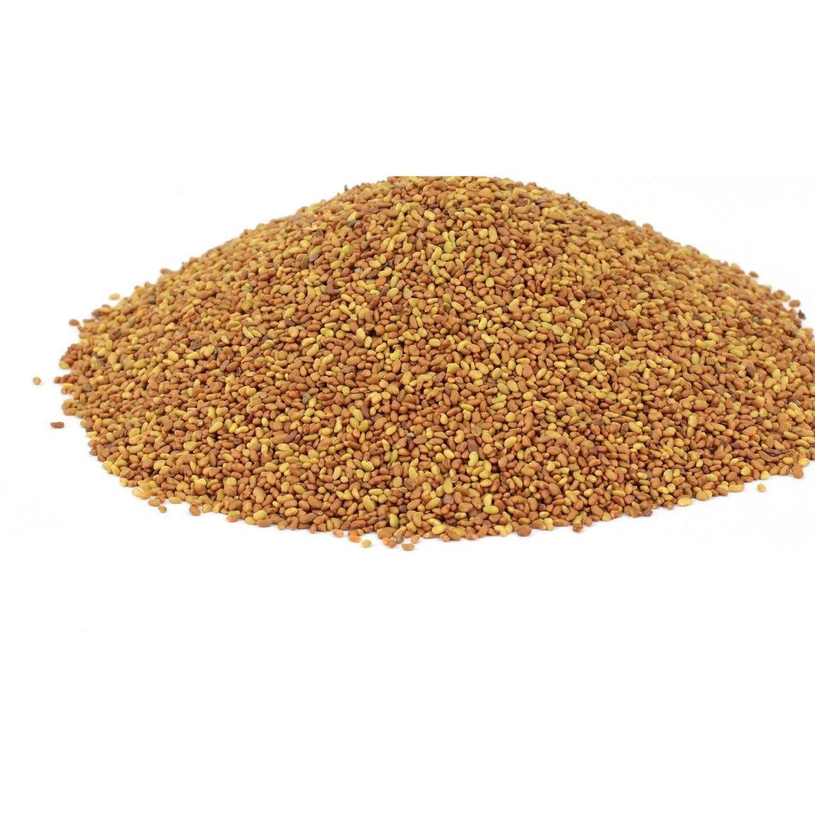 Alfalfa Seed - For Organic Sprouted Seed Tea