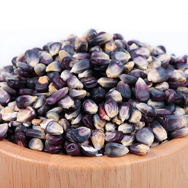 Blue Corn Seed - Heirloom Organic For Sprouted Seed Tea