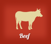 BBQ Beef Recipes