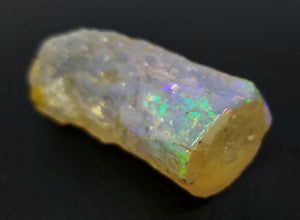 Opalized Wood Branch - Opal Limb Cast  40.3 gram #152