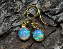 Load image into Gallery viewer, Opal Gold Earrings