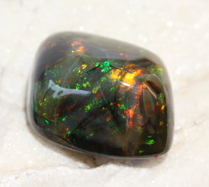 Rare Large Black Opal Specimen - Bright Bold Colors- 68.8 grams  #1339