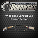 Daytona Sensors Wide-band Exhaust Gas Oxygen Sensor