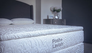 Posh + Lavish Release Plush Pillowtop at Real Deal Sleep