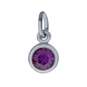 Sterling Petite Penny with Sterling Silver Birthstone Charm with Swarovski® Crystal- February