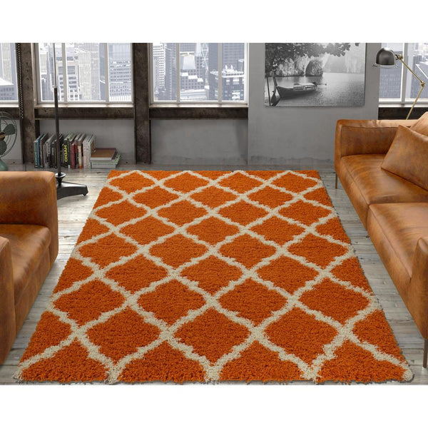 Cozy Moroccan Trellis Orange Shaggy Area Rug - 5X7 - Luna Furniture