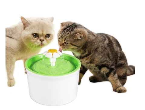 Automatic water feeder for your cat and dog