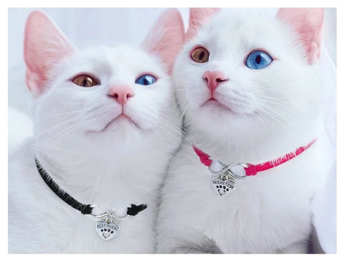 oh-so pretty cat collars
