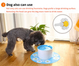 Automatic cat and dog pet water fountain with filter