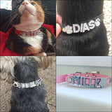 Custom leather dog collars: bling for your baby - in reality
