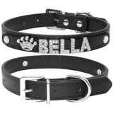 Custom leather dog collars: bling for your baby - black
