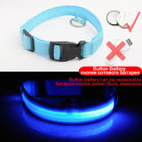 Lighted dog collars - blue - battery charging