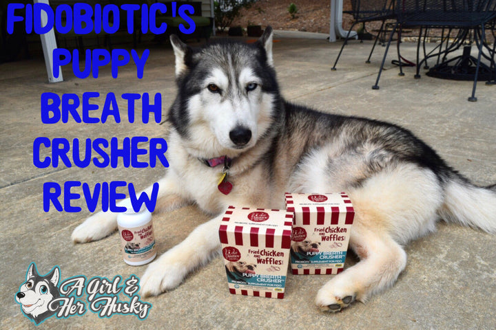A Girl and Her Husky Reviews Puppy Breath Crusher
