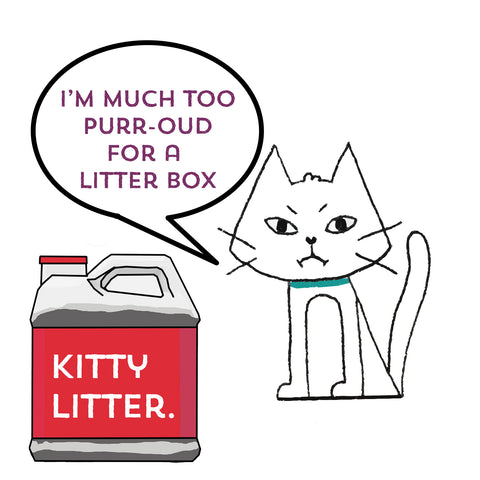 cat body language with kitty litter