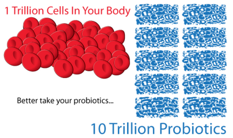 Image comparing probiotics to the cells in your body.