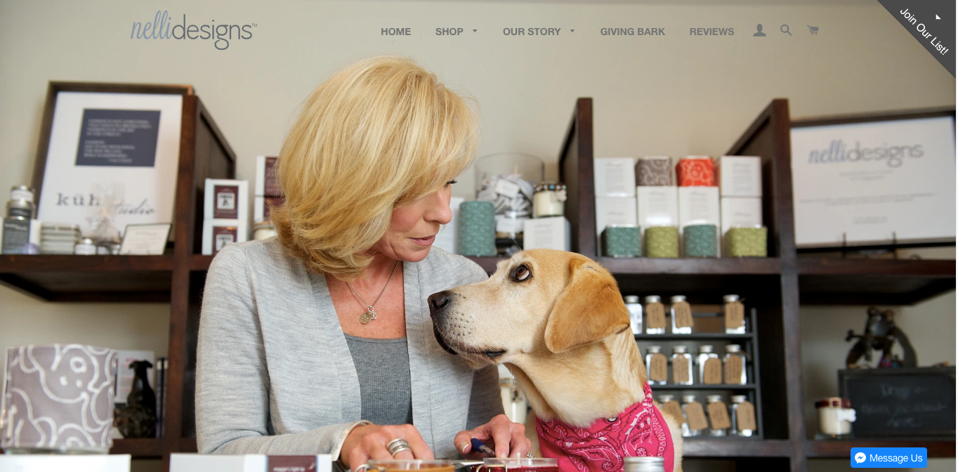Nelli Designs - Affordable and Local Shopify Website Design in Twin Cities