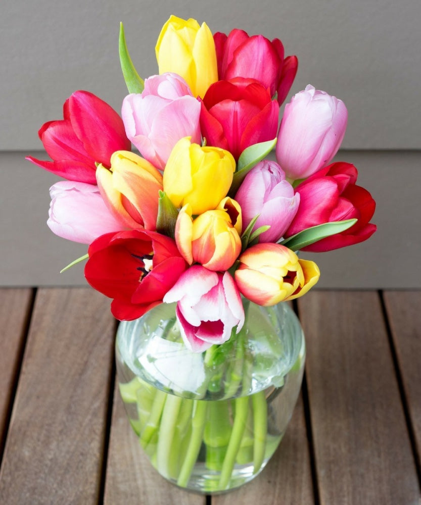 Sunny Tulips - 15 Stems Flowers