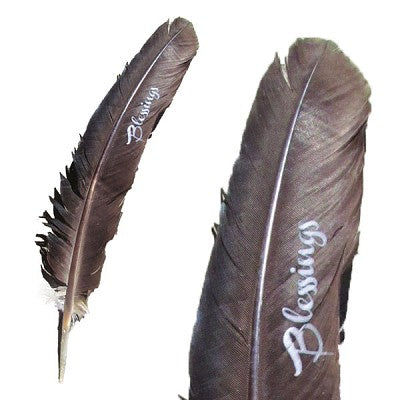 Blessings Smudge Feather