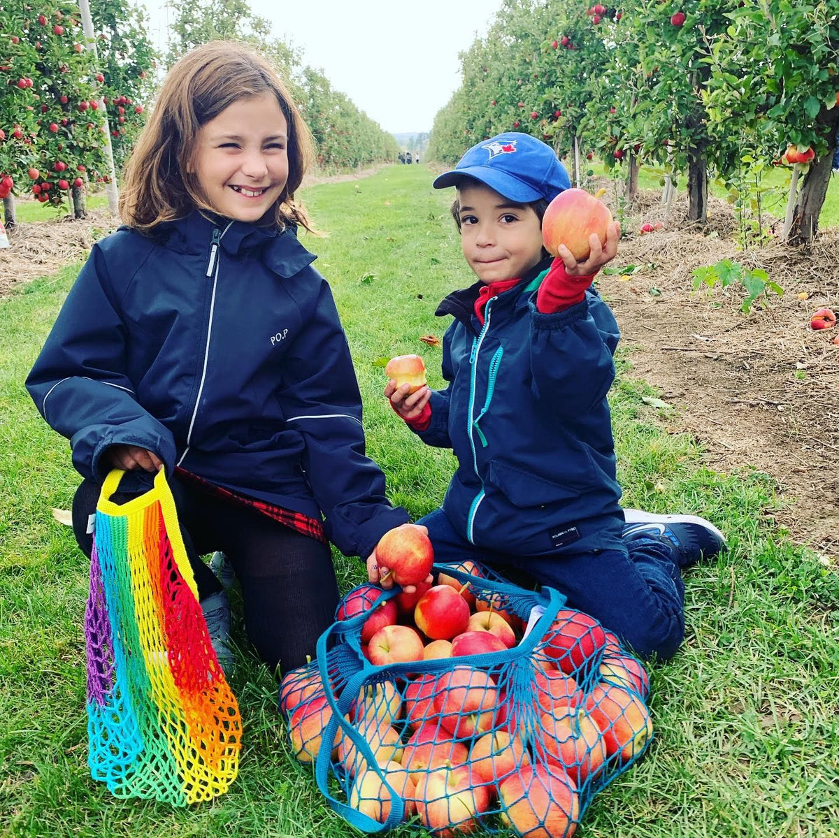 Kids picking apples with Filt net bags