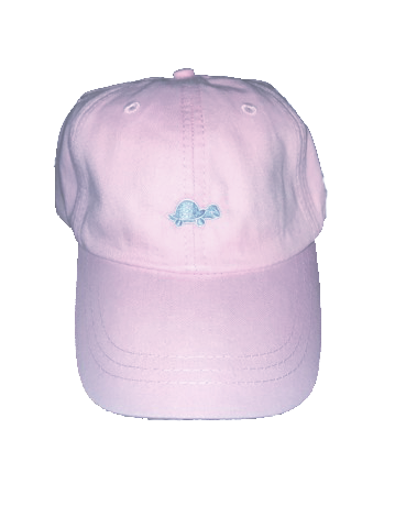 Turtle Hat (Pink)