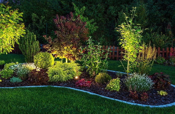 LED lighting in flowerbed