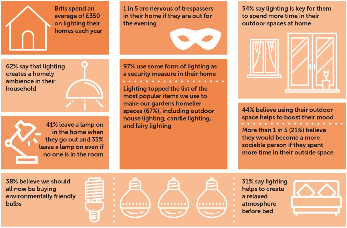 Lighting Survey Infographic