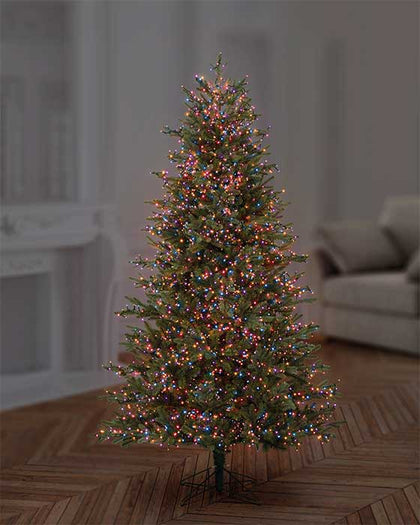 TreeBright Lights (Timer) - 12.5M - Multifunction - Multicolour - 500 LEDs