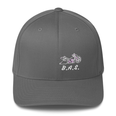 BAS Sideview Bagger Fitted Hats - Backyard Air Suspension & Innovations, LLC.
