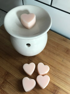 Mini Wax/Oil Burner