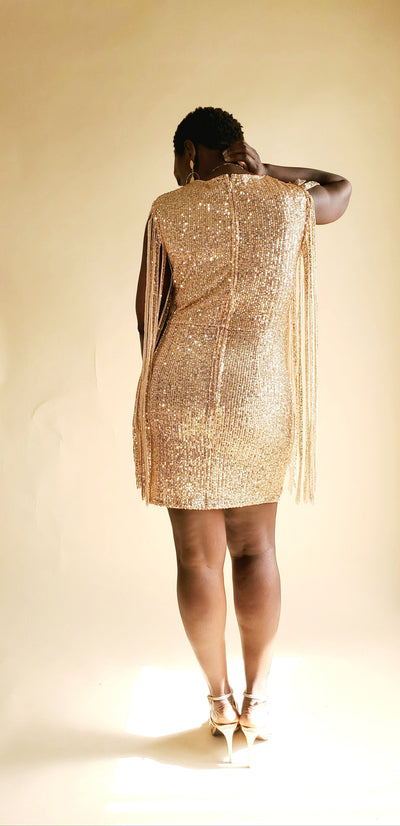 Salsa | Mini Sequin Dress - Shop-twelve29
