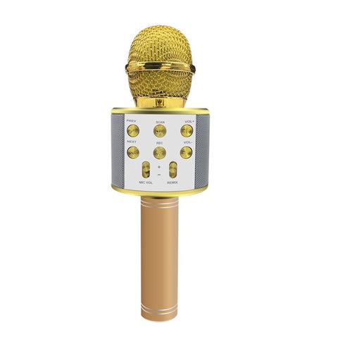 Image of Professional Wireless Microphone Speaker Handheld Bluetooth Microphone with Battery Karaoke Mic Music Player Singing Recorder