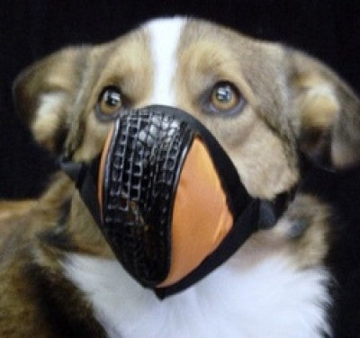 AEROX PET MASK