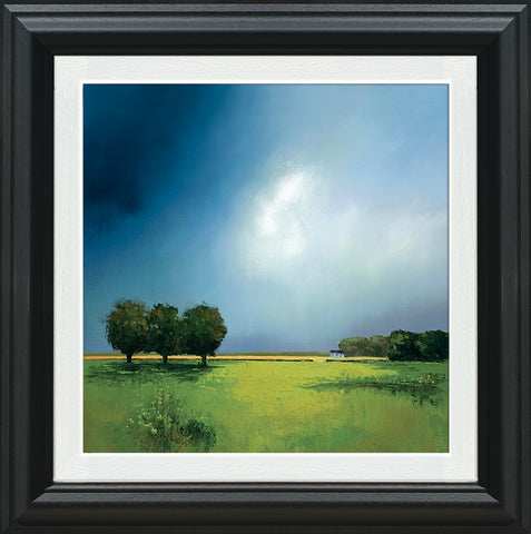 Barry Hilton, Green Fields of Home, Framed