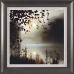 John Waterhouse, Breathing Space, Framed