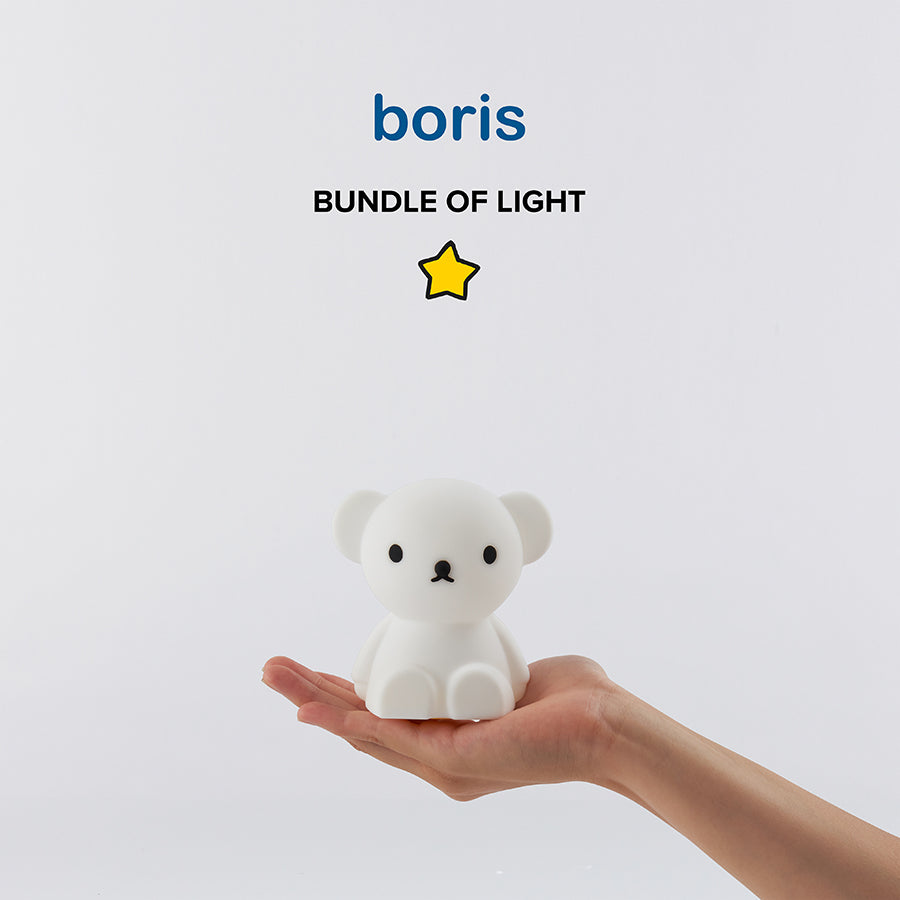 Battery Lamp . Bundle Of Light - Boris