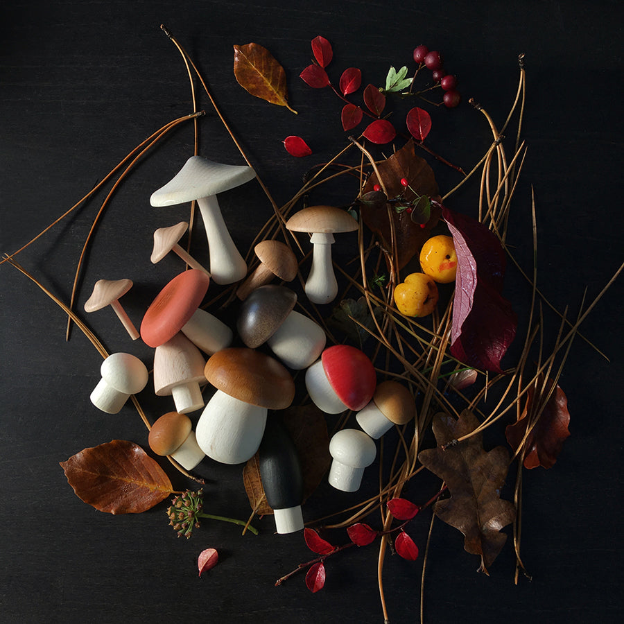 Toy / Collection . Forest Mushrooms Basket