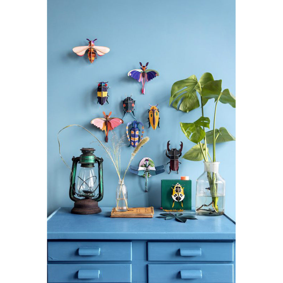Wall Decor . Insects - Blue Comet Butterfly