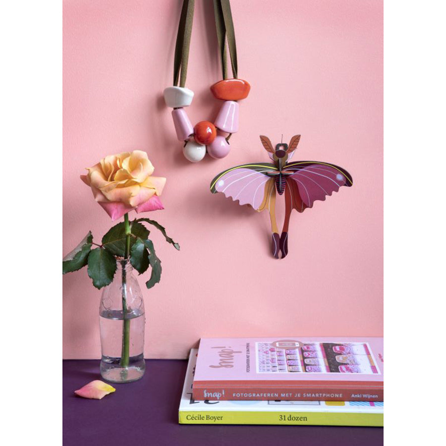 Wall Decor . Insects - Pink Comet Butterfly