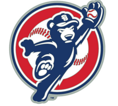 South Bend Cubs Catching Cub Lapel Pin
