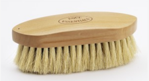 Wood Back Dandy Brush with Tampico Bristles 8L-Medium